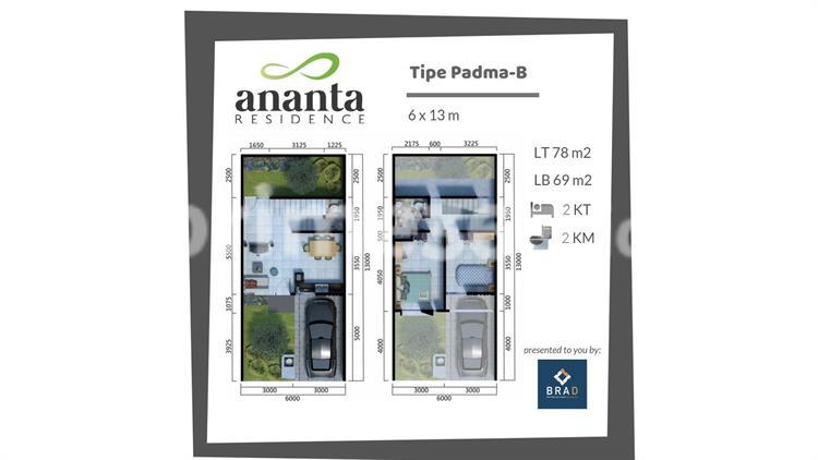 Type Padma