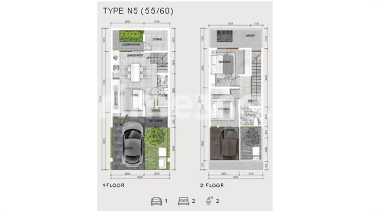 Type N5