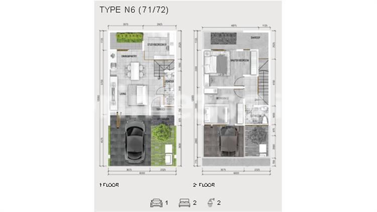 Type N6